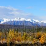 Yukon - tra cielo e terra