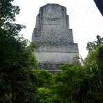 tikal la punta di una piramide spunta dalla giungla