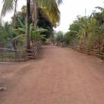 deviazione per una piantagione di banane