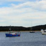 coels bay
